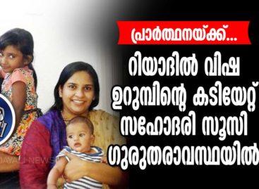 റിയാദില് വിഷ ഉറുമ്പിന്റെ കടിയേറ്റ് സഹോദരി സൂസി  ഗുരുതരാവസ്ഥയില്